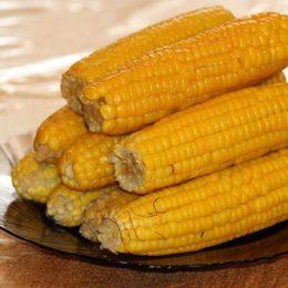 Чем полезна кукуруза