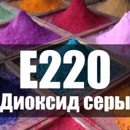 Пищевая добавка Е220 Диоксид серы