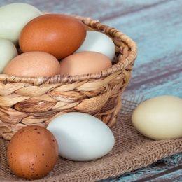 Яйцо для избавления от папиллом
