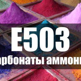 Карбонат аммония Е503