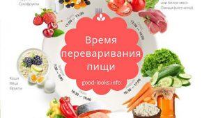 Миниатюра к статье Сколько времени переваривается пища в желудке человека