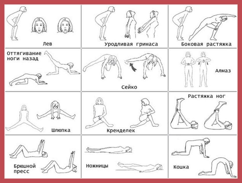 15 упражнений бодифлекс