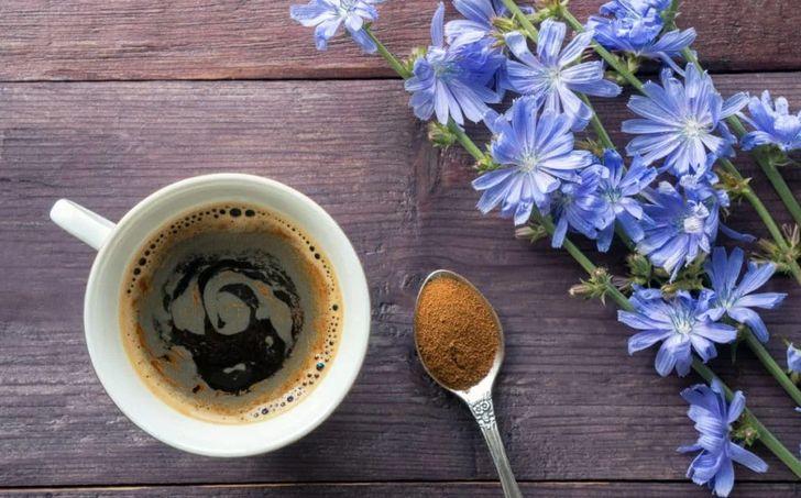 Бодрит ли цикорий, как кофе?