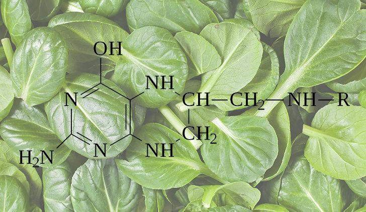 Витамин В9 химическая формула