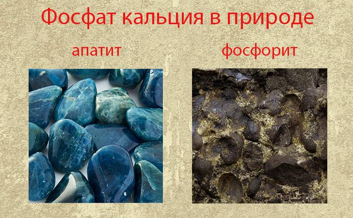 Фосфат кальция в состав полезных ископаемых