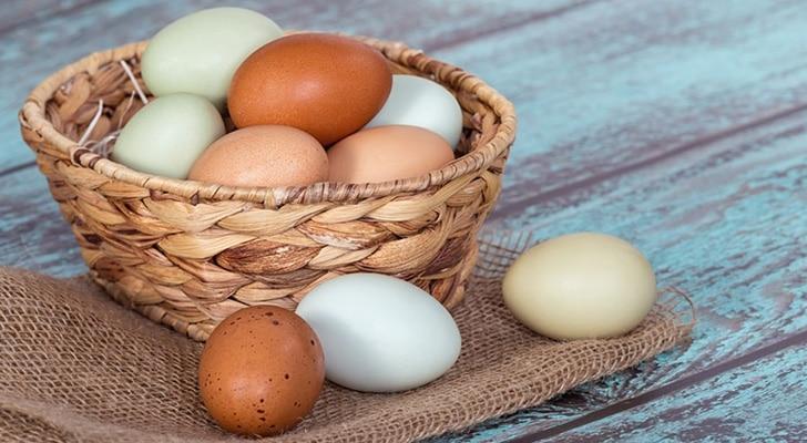 Папиллома лечение яйцами