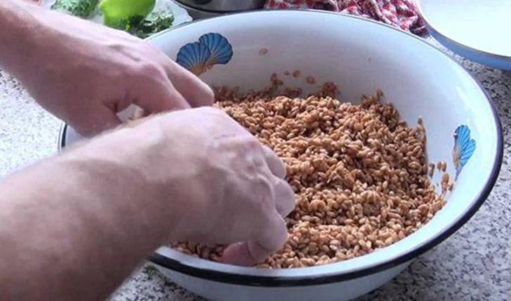 Предварительное замачивание зерен перед проращиванием