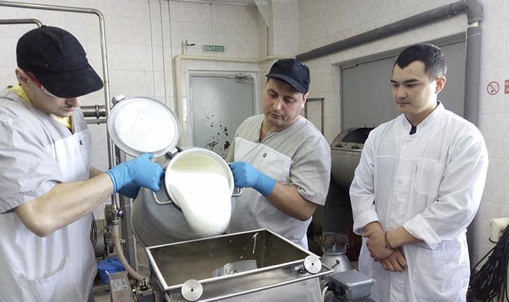 Сырье для производства масла
