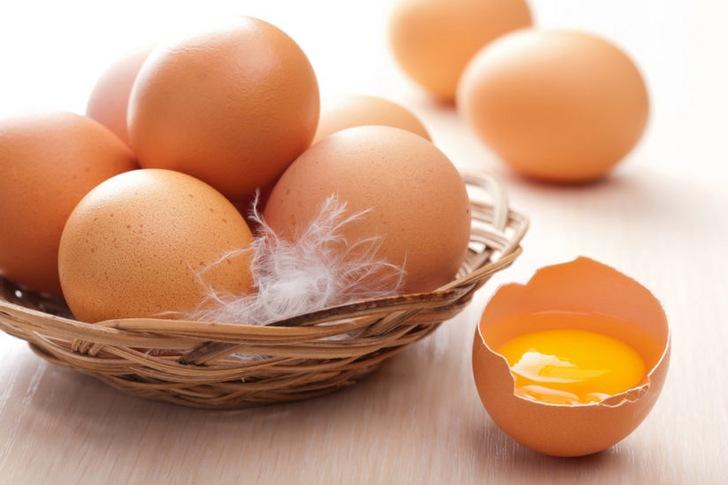 Соотношение составных частей яйца