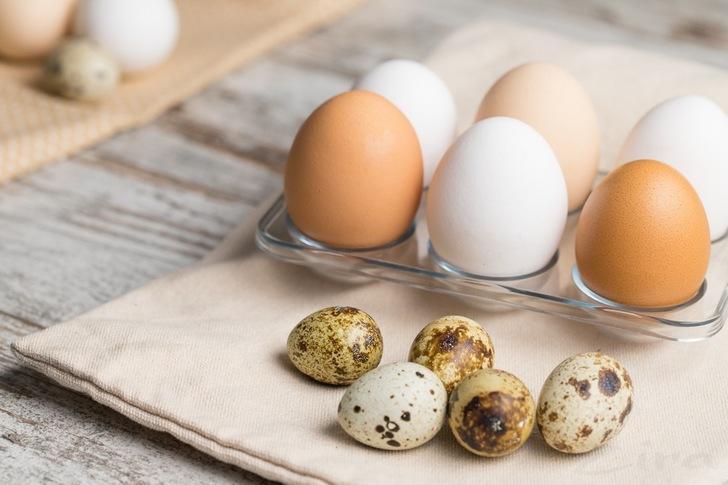 Количество белка в куриных и перепелиных яйцах