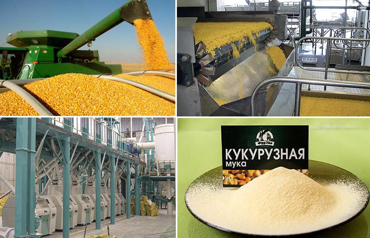 Производство кукурузной муки