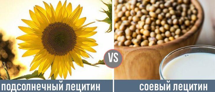 Сходства между соевым и подсолнечным лецитином