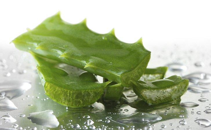 Сок алоэ для лица: лучшие домашние рецепты от морщин