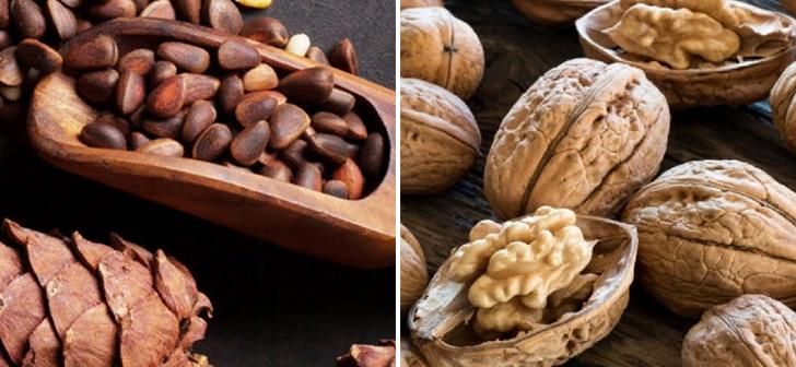 Грецкие и кедровые орехи