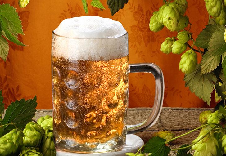 Какое пиво лучше для волос